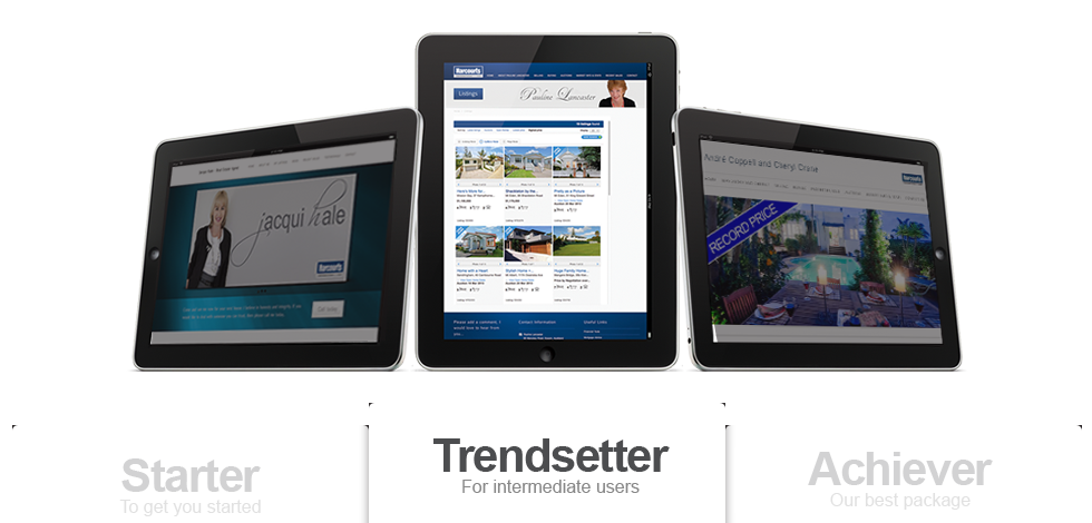 Realestate Website Trendsetter Package